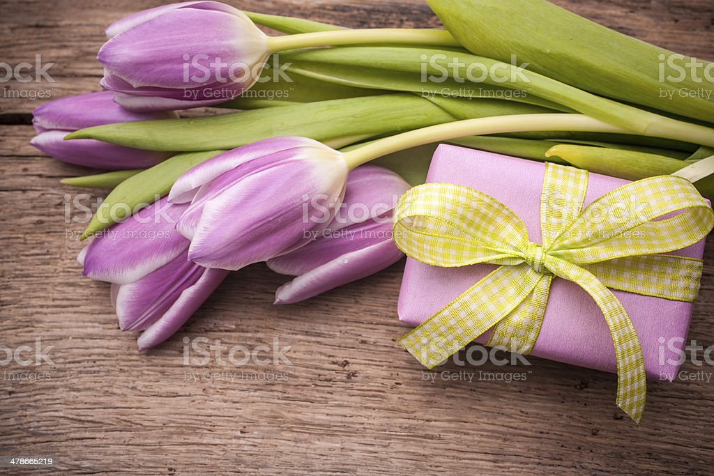 pink  tulips with a gift box stock photo