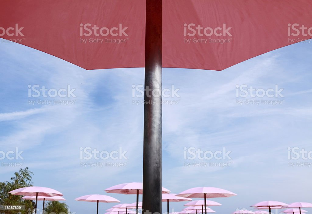 Pink Umbrellas stock photo
