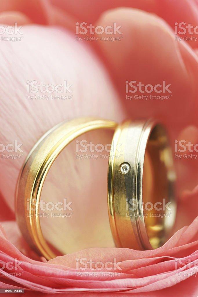 Pink Wedding Rings Series royalty-free stock photo
