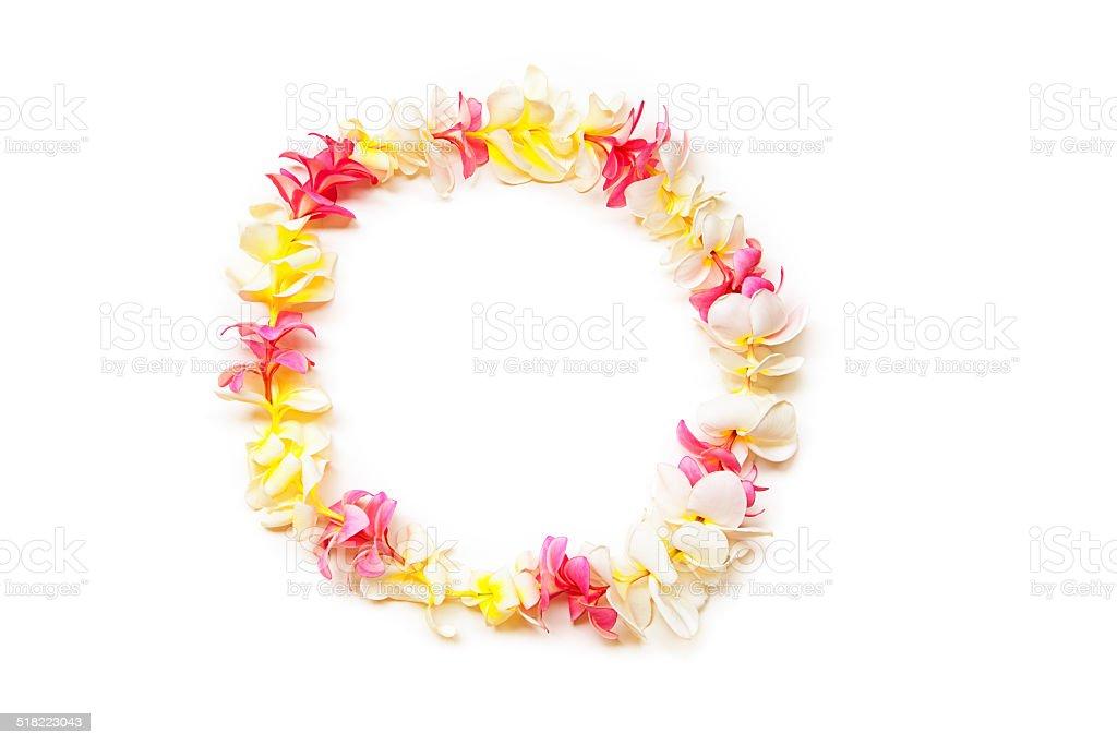Pink, white and Yellow Plumeria Lei of Hawaii stock photo