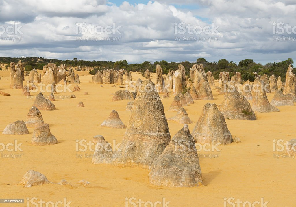 Pinnacles Desert in the Nambung National Park stock photo