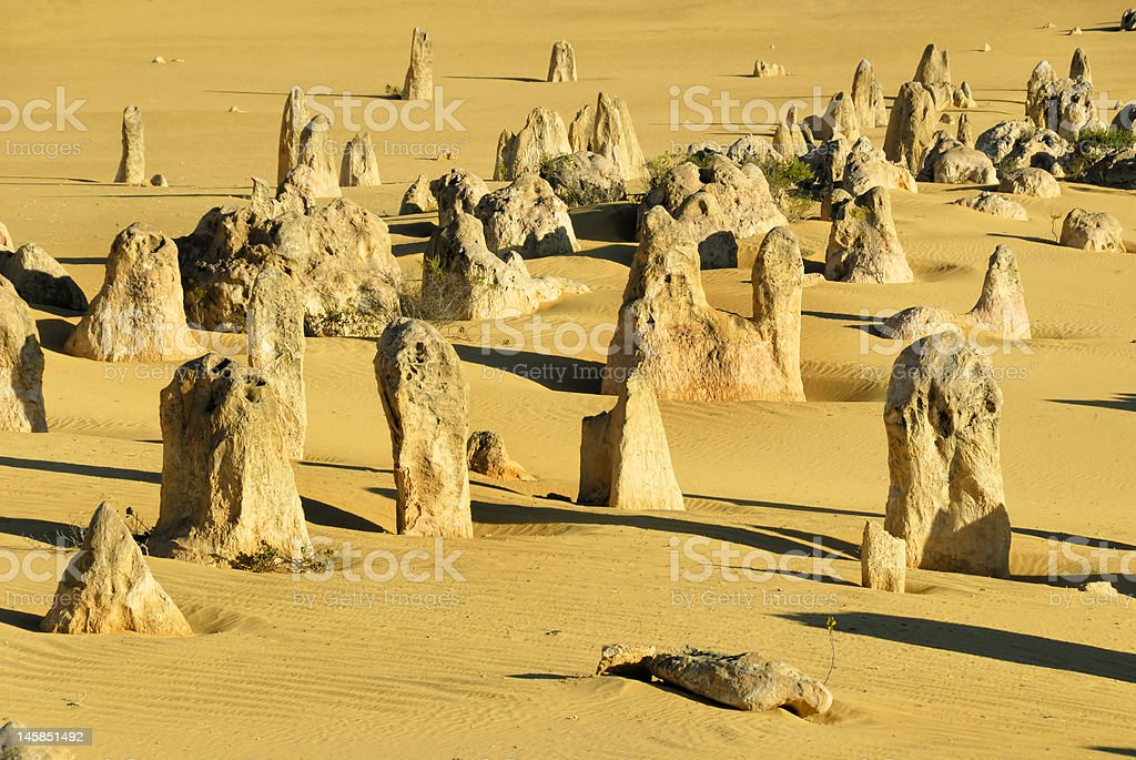 Pinnacles desert in Western Australia royalty-free stock photo