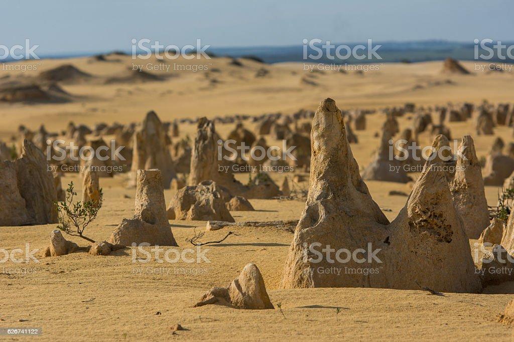 Pinnacles Desert stock photo