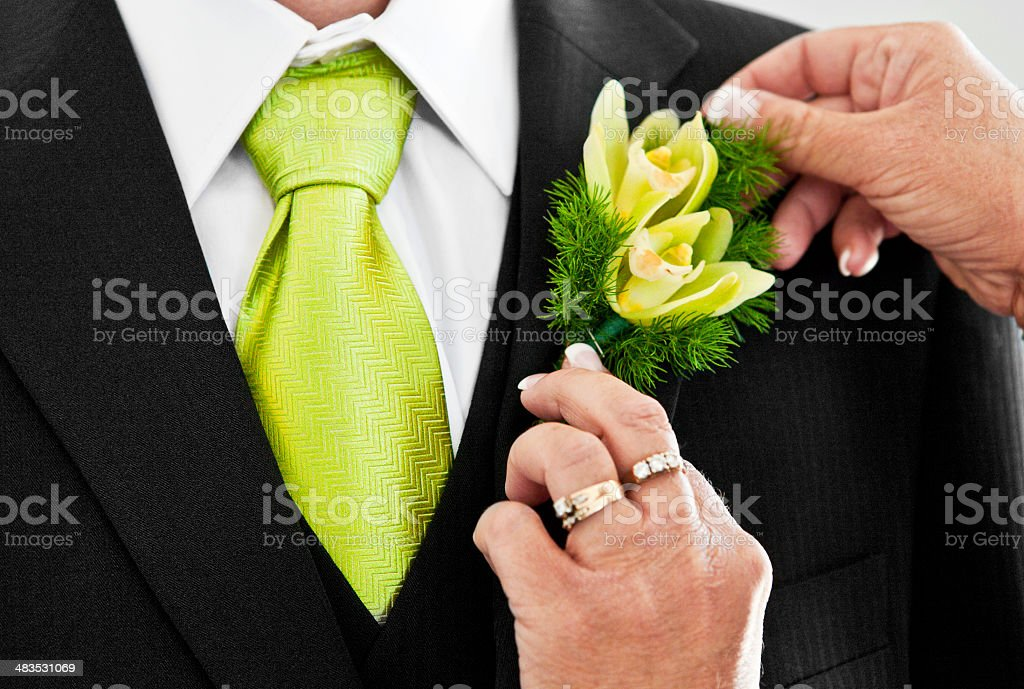 Pinning a Boutonniere on the Groom royalty-free stock photo