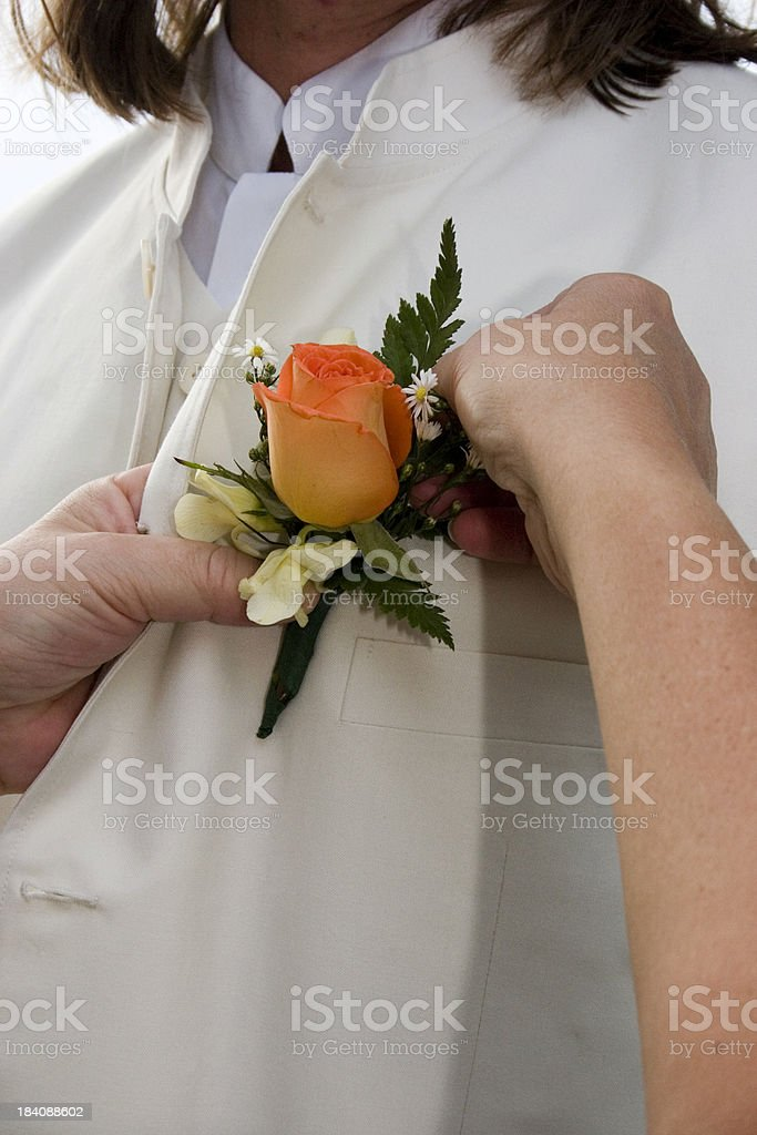 Pinning flower on vest royalty-free stock photo