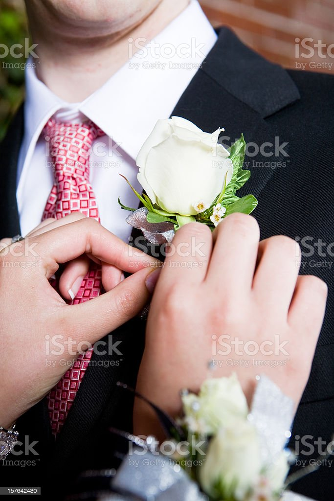 Pinning on Boutonniere royalty-free stock photo