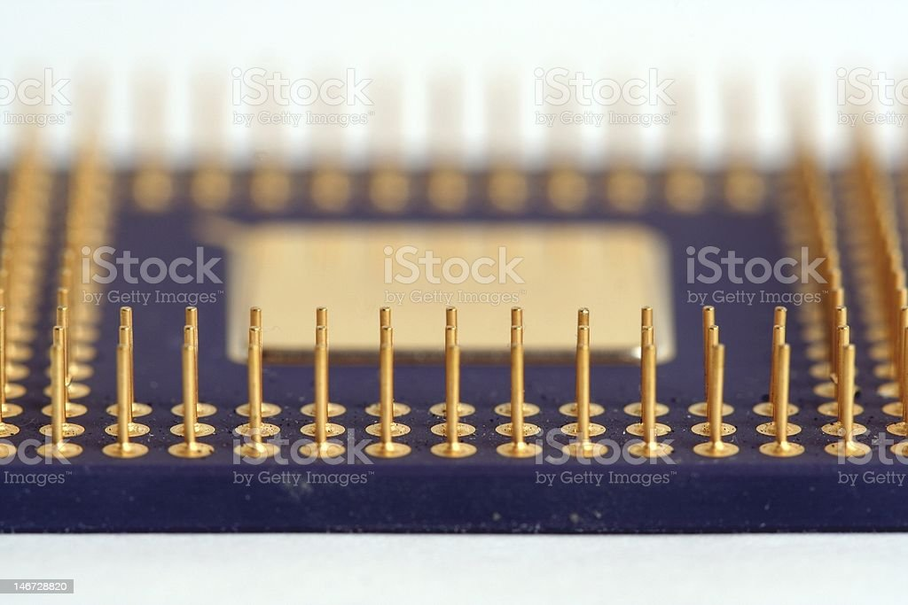 Pins of a Processor royalty-free stock photo