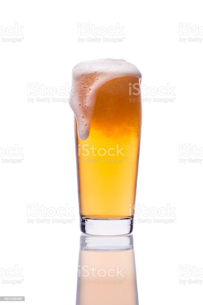 Pint glass of lager beer. Home brewing. stock photo