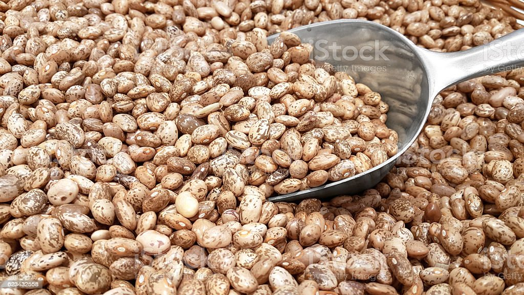 Pinto Beans and a Transfer Scoop stock photo