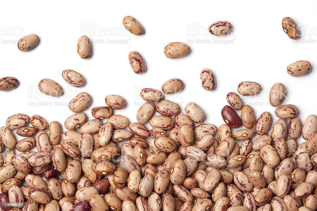 Pinto beans on white background stock photo