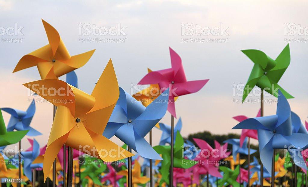 Pinwheels stock photo