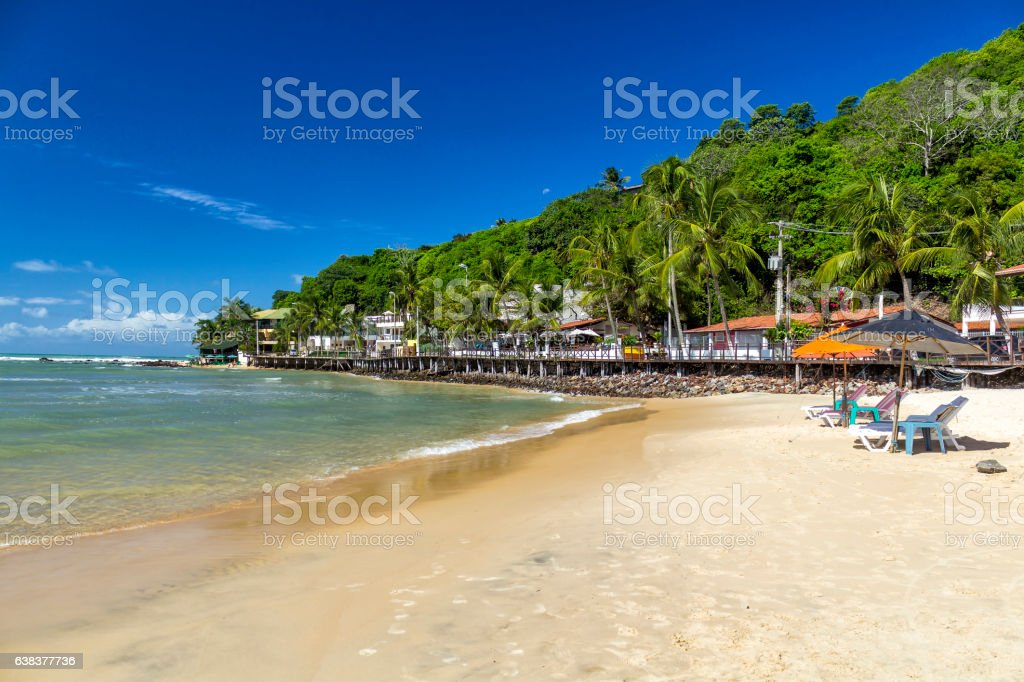 Pipa Beach stock photo