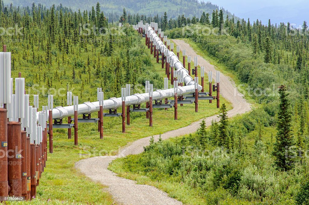 Pipeline Close Up in Green Forest stock photo