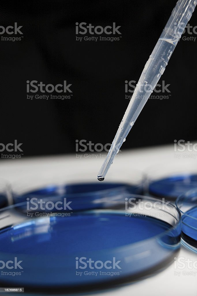 Pipette & Petri Dish containing blue substance royalty-free stock photo