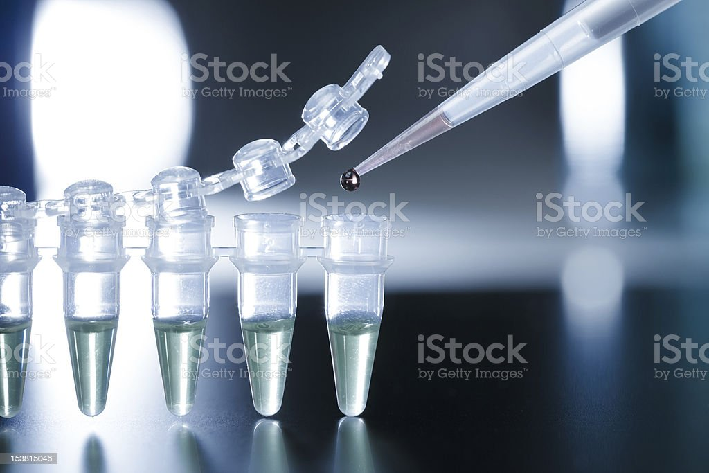 Pipette collecting samples for stem cell research in the lab stock photo