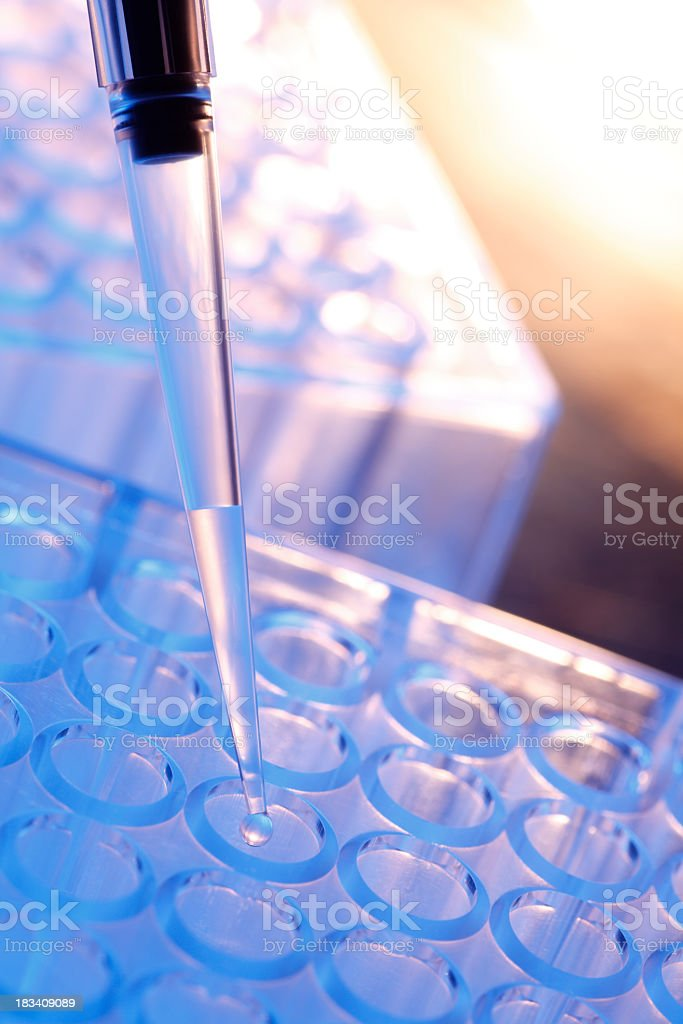 Pipette dropping clear liquid into test tube royalty-free stock photo