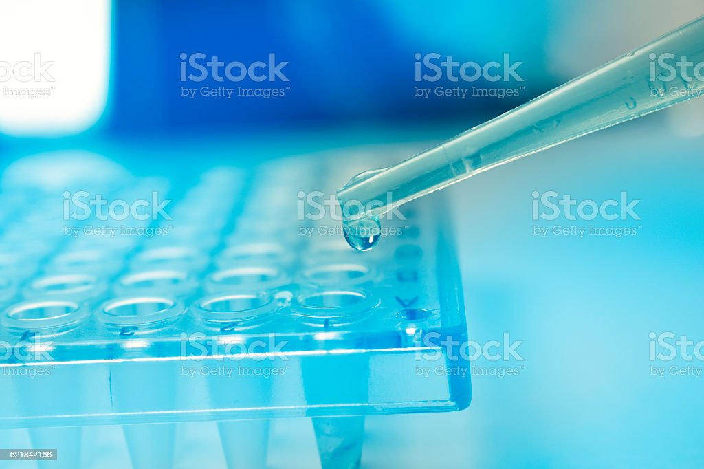 Pipette dropping stem cell research fluid on pcr plate. Medical stock photo