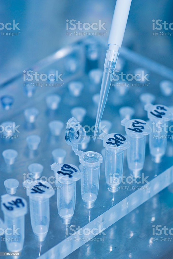 Pipette taking samples from test tubes in the lab royalty-free stock photo