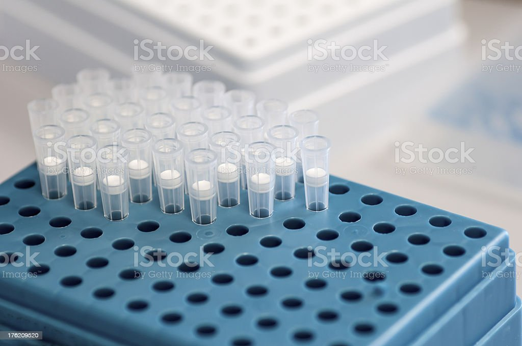 Pipette tips on blue royalty-free stock photo