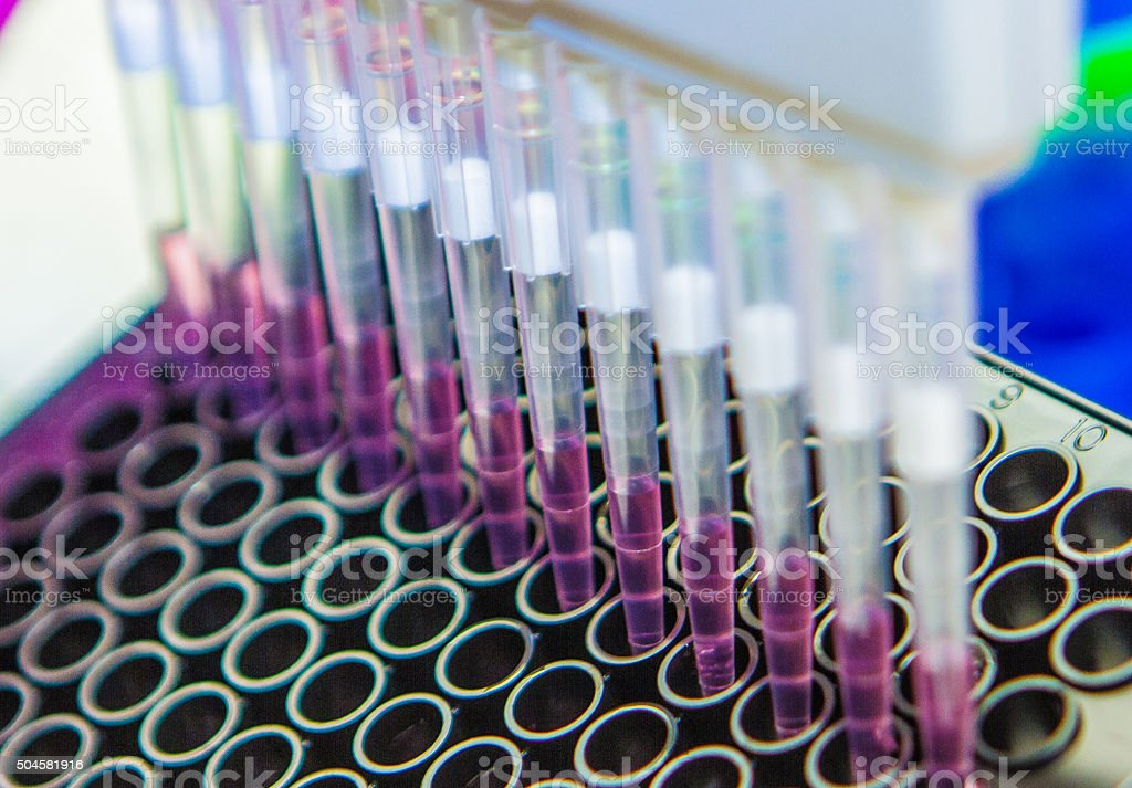 Pipette With Cell Culture Plate - Scientific Research stock photo