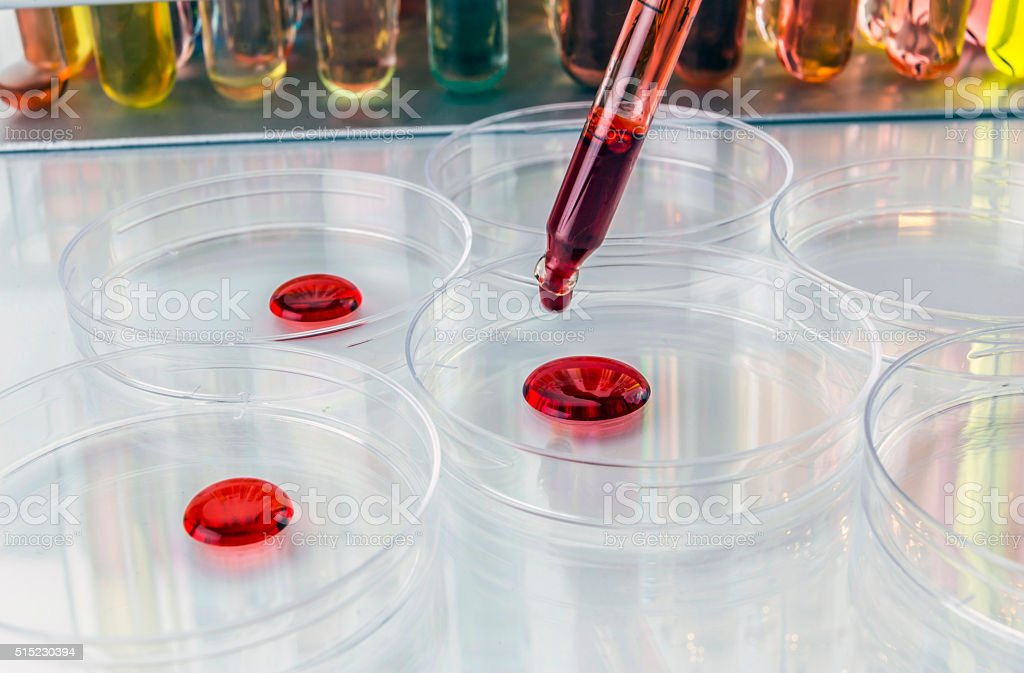 Pipette with drop of liquid and petri dishes stock photo