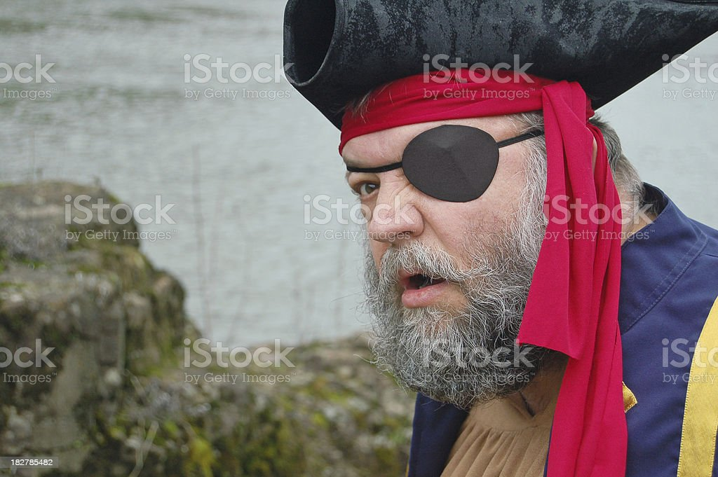 Pirate Profile stock photo