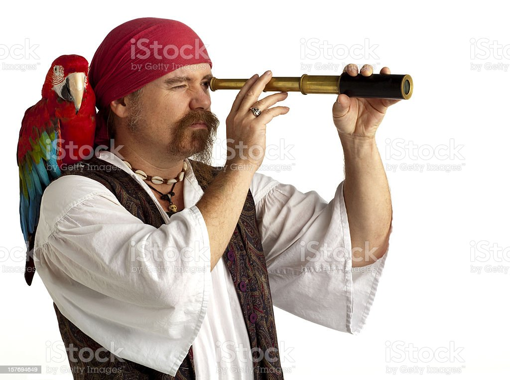 Pirate with Parrot searching using Spyglass, White Background. stock photo
