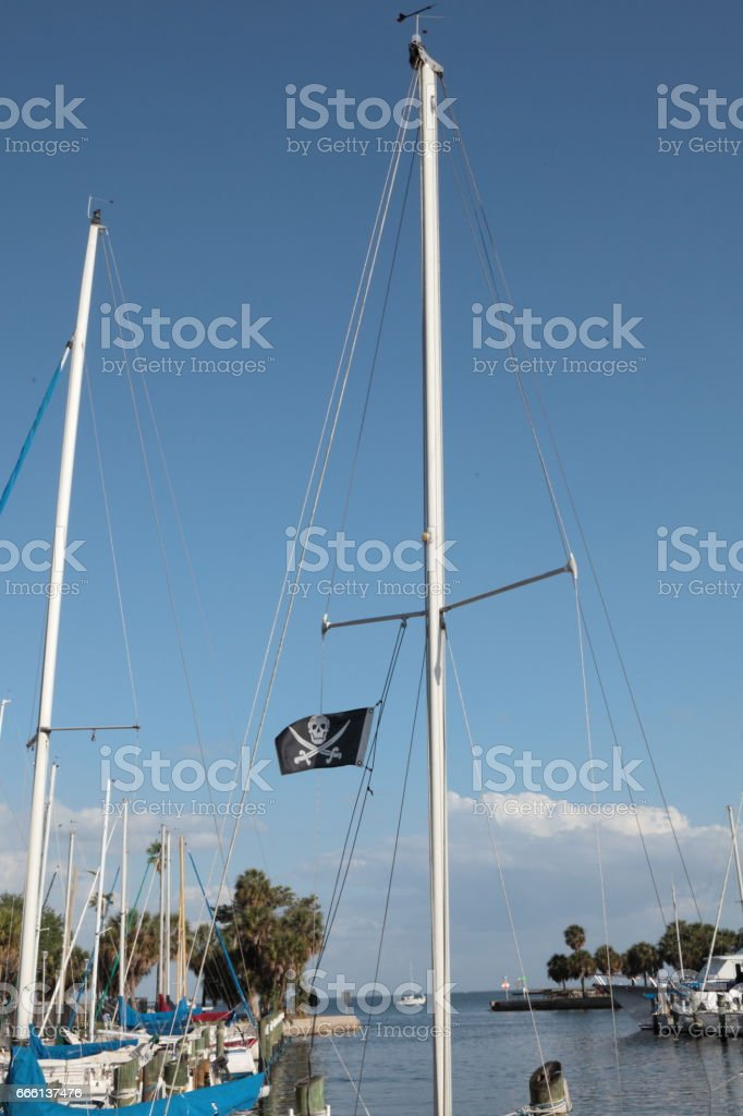 Pirate`s flag. stock photo