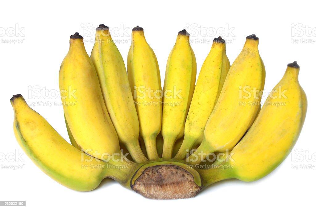 Pisang awak, banana stock photo