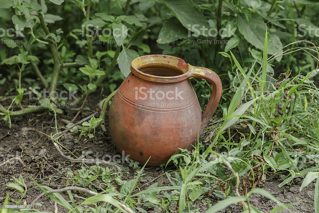 pitcher in the garden royalty-free stock photo