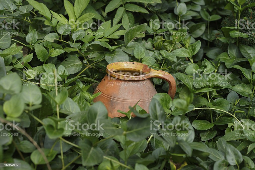 pitcher in the grass royalty-free stock photo