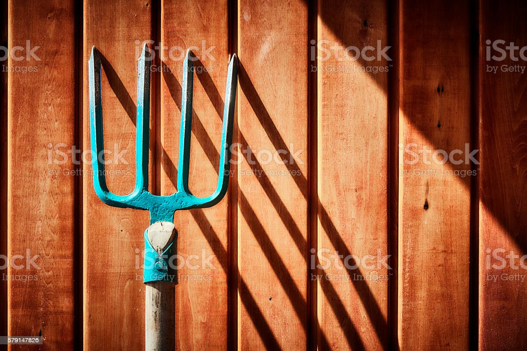 Pitchfork Against Wooden Boards stock photo