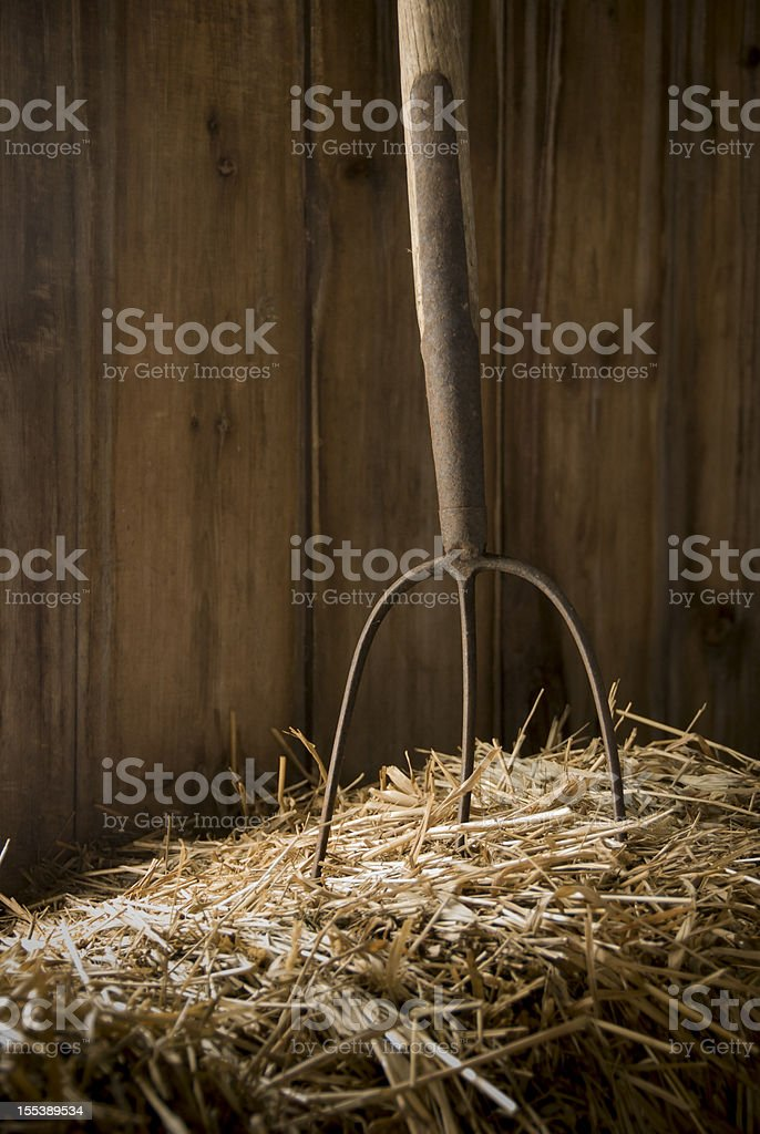 Pitchfork in Hay stock photo