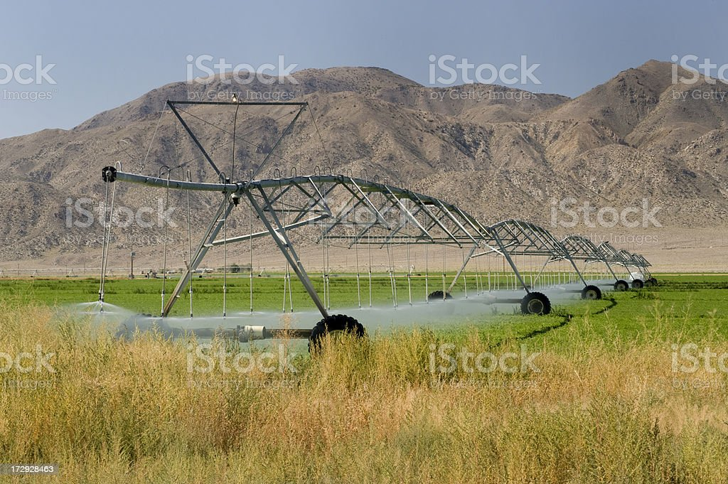 Pivot Irrigation, Nevada stock photo