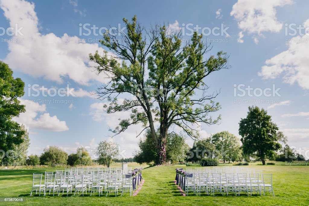 Place for a wedding ceremony. Tree, chairs and grass. Bleu sky stock photo