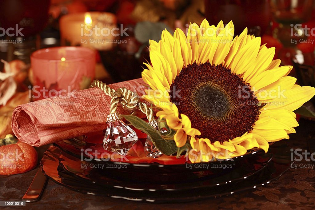 Place setting for Thanksgiving royalty-free stock photo