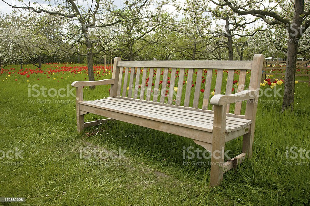 Place to enjoy the springtime royalty-free stock photo