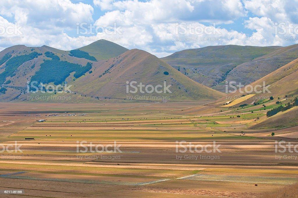 plain of Castelluccio of Norcia in summer stock photo