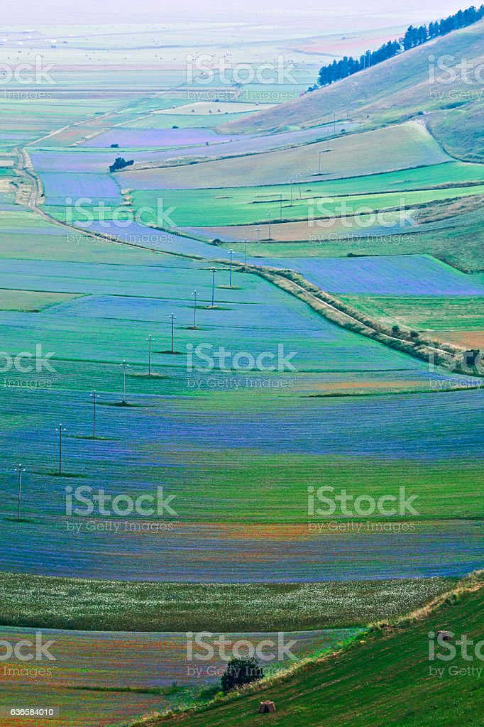 Plain of Castelluccio seen from above stock photo
