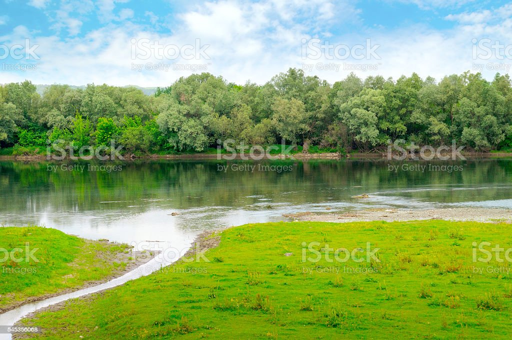 plain river with inflows and floodplain forest stock photo