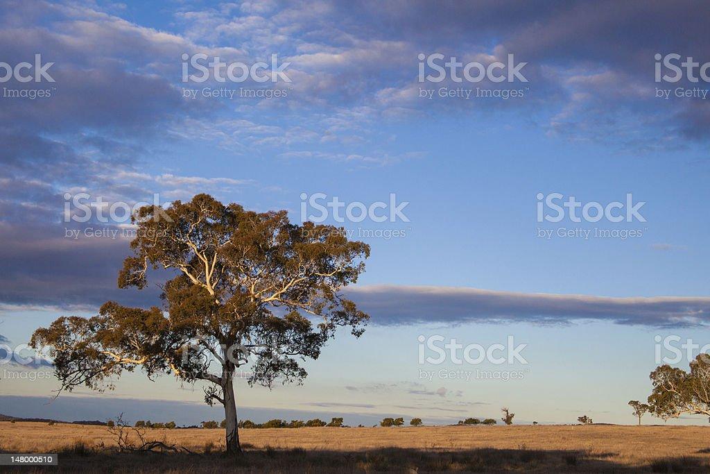 Plains near Canberra, Australia Capital Territory stock photo