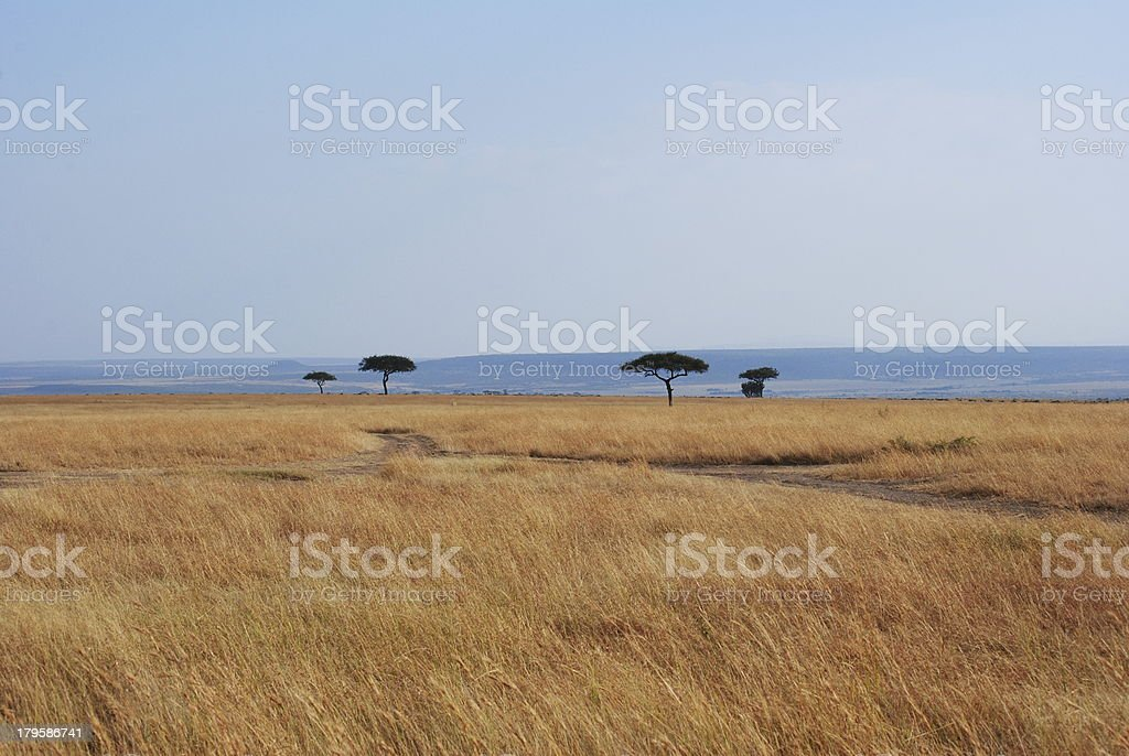 Plains stock photo