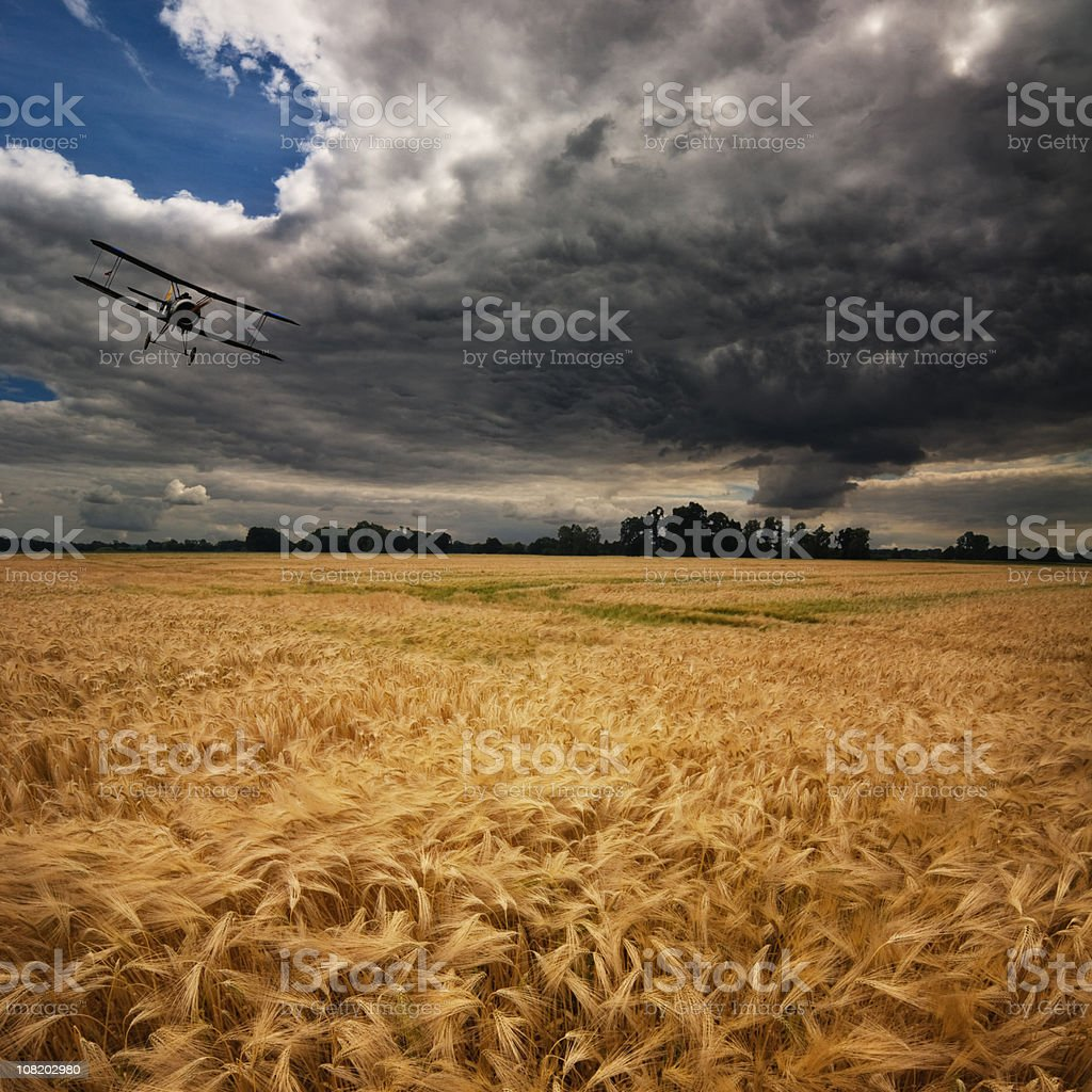 Plane Flying Above Field Crop with Thunderstorm Clouds royalty-free stock photo