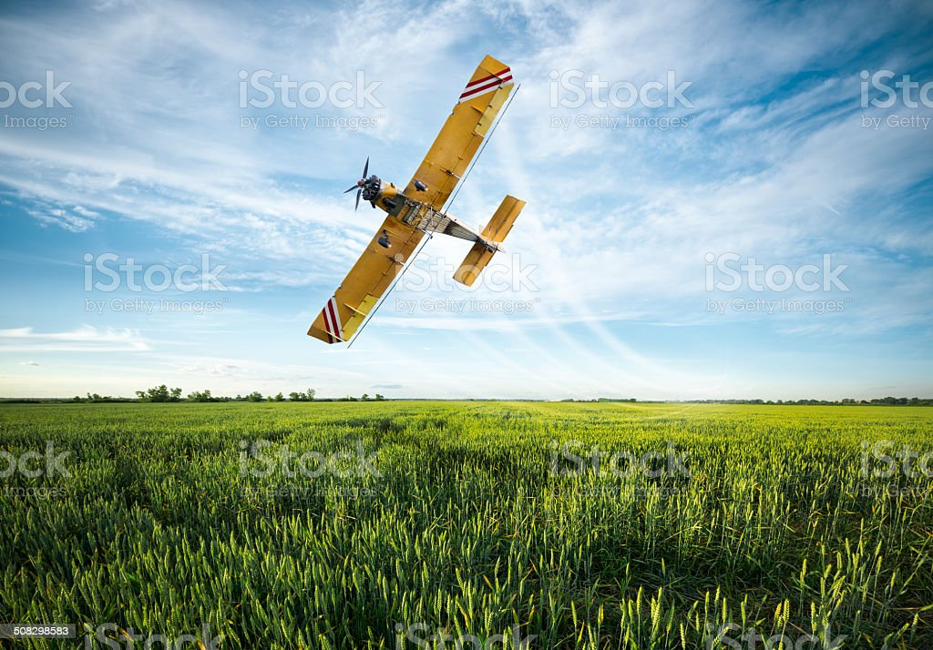 plane sprayed crops in the field stock photo