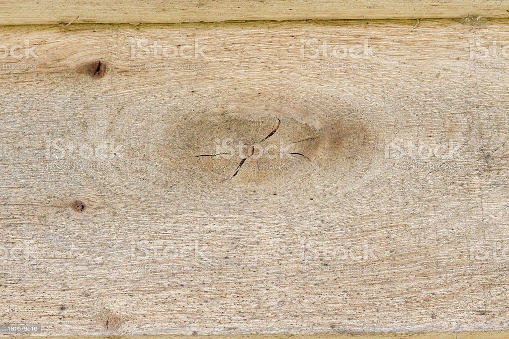 Plank in young yellow wood macro royalty-free stock photo