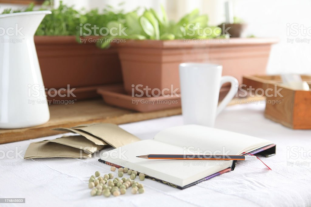 planning the garden royalty-free stock photo