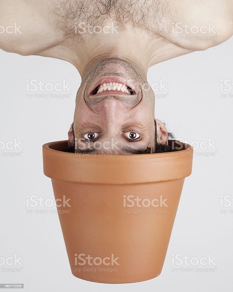 plant boy smiling royalty-free stock photo