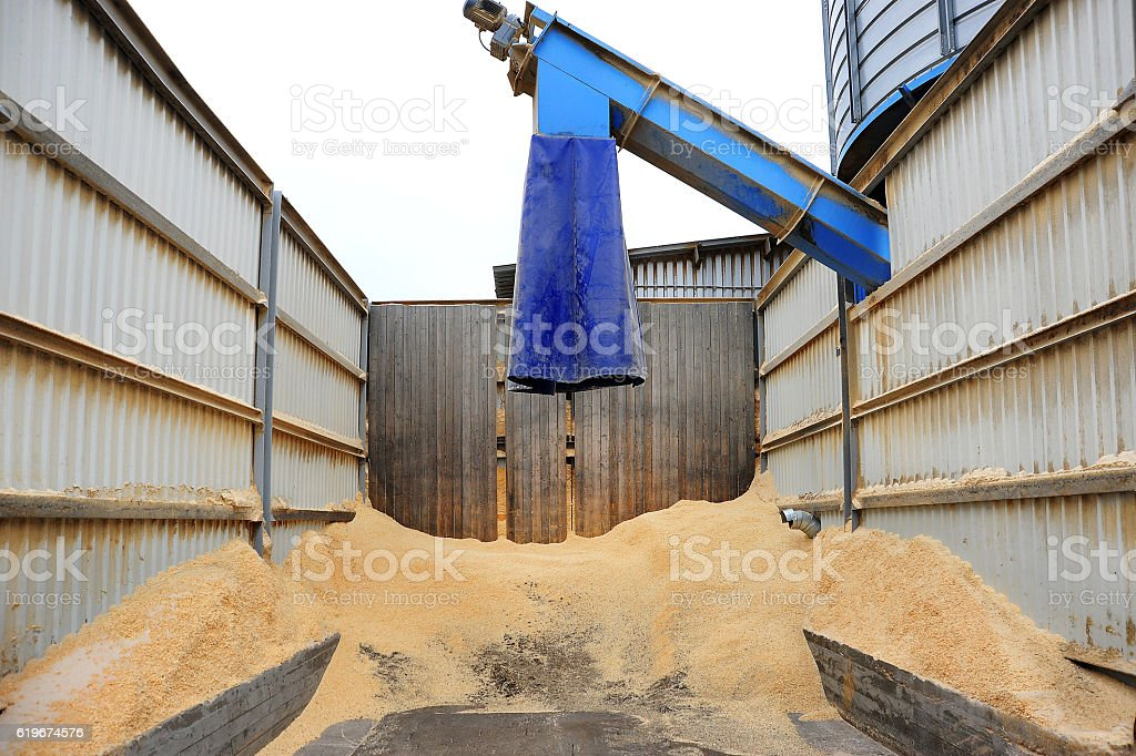 Plant for woodworking stock photo