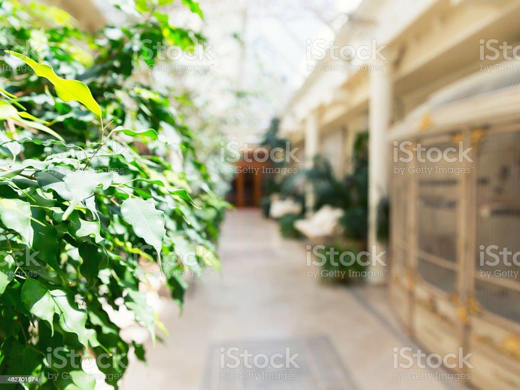 Plant gallery hall stock photo