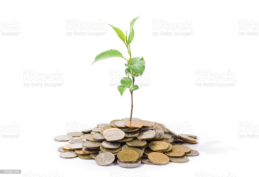 Plant growing on coins royalty-free stock photo